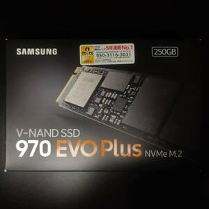 SSD 250GB Samsung 970 EVO Plus NVMe M.2 MZ-V7S250B/IT