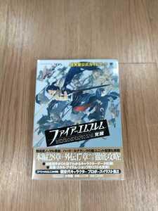 【B2501】送料無料 書籍 ファイアーエムブレム 覚醒 任天堂公式ガイドブック ( ニンテンドー3DS 攻略本 空と鈴 )