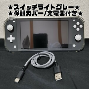 ニンテンドースイッチライト Nintendo Switch Light グレー 保護カバー 充電器セット★