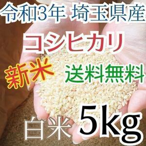新米 美味しいお米 令和3年 埼玉県産 コシヒカリ 白米 5kg 送料無料