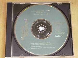 レイナードスキナード LYNYRD SKYNYRD US盤プロモCD ALL I CAN DO IS WRITE ABOUT IT f914