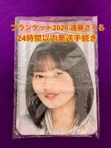 乃木坂46 ブランケット 遠藤さくら 新品 個別ブランケット2020 個別ブランケット