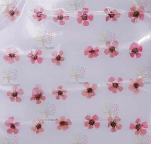 押し花 素材 ドライフラワー リーフ クラフト レジン DR2240K ネイル用押し花 小花 薄いピンク