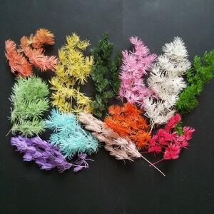 ミリオクラダス 12色 ラメ付 プリザーブドフラワー ハーバリウム花材 アレンジメント花材 ②