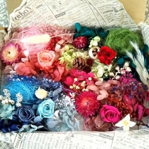 プリザーブドフラワー、ドライフラワー、花材 ハーバリウム花材4色アソート、内容変更しました