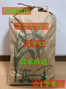 谷津田の米 令和3年 新米 茨城県 常陸太田産 コシヒカリ 5キロ☆1等米☆