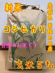 〈新米・玄米〉令和3年 茨城県産 コシヒカリ 玄米5キロ★1等米★