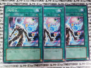遊戯王 魂吸収(ノーマル)×3枚セット