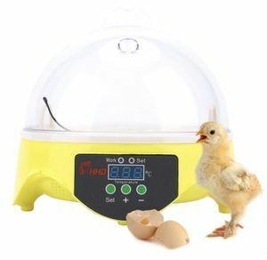 卵7個 インキュベーター 転卵式 孵卵器 鳥類用 孵卵機 孵化器 孵化機 鶏 アヒル ウズラ 110V対応(SSS3)