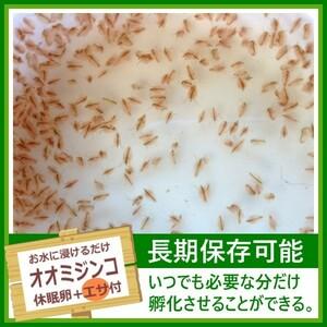 オオミジンコの卵 [餌付き] メダカ 稚魚 針子 幼生 幼体 休眠卵 耐久卵 乾燥卵 生餌 生き餌 生エサ 生きエサ 活餌 活き餌 活エサ 活きエサ