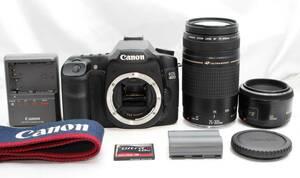 【極上美品 SanDisk 1GBつき 神レンズ&超望遠 おまけダブルレンズセット】 Canon EOS 40D ★ EF50mm F1.8 II EF75-300mm II USM