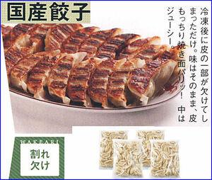 ■お得な訳あり国産餃子/200個入り/割れカケ/冷凍便/送料無料