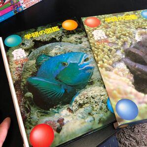 魚 学研の図鑑/学習研究