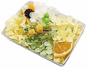 シトラスシャワー シトラスシャワー花材セット 手芸クラフト ハーバリウム花材 アロマワックスサシェ プリザーブドフラワー アジサ