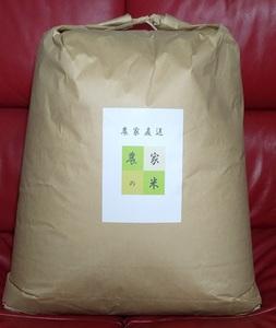 令和3年産 長野県 安心コシヒカリ 無洗米25Kg 新米