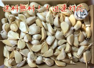 にんにく(青森県産ホワイト六片)110粒 +おまけ10粒 MOT農園No.480