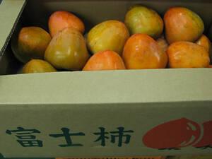 超大玉 希少な 富士柿 約9.5~10kg 1円スタート 家庭用