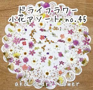 ドライフラワー 小花アソート no.45