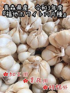 青森県産 乾燥にんにく 福地ホワイト六片種 令和三年 ニンニク 規格外 業務用 加工用 M~2Lサイズ混合 土付き 1キロ 新物