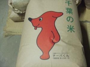 ☆30kg送料一律千円☆25kgではありません☆☆農家直送☆即発送☆千葉県一等米コシヒカリ令和3年新米30㎏玄米
