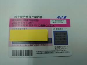 送料無料 番号通知 ANA 全日空 株主優待券 11月末期限