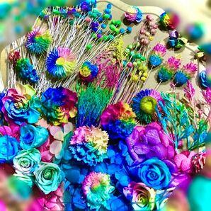 ( Rainbow大箱・2 ) 加工 プリザーブド ハーバリウム ドライフラワー薔薇