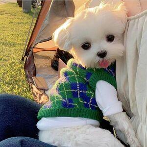 犬服 小型犬用 アウター アーガイル柄 袖なし ドッグウェア セーター ニット 防寒着 新作 新品 ペットグッズ ペット 冬 S,M,LサイズDJ781