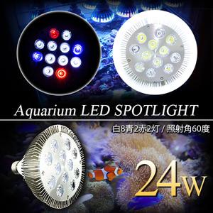 LED 電球 スポットライト 24W(2W×12)白8青2赤2 水槽 照明 E26 LEDスポットライト 電気 水草 サンゴ 熱帯魚 観賞魚 植物育成