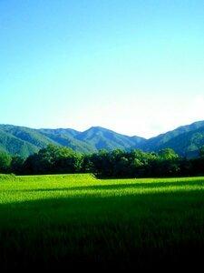 令和3年 無肥料栽培コシヒカリ約1kg 新米 山口県産阿東米 山奥のぽつん米