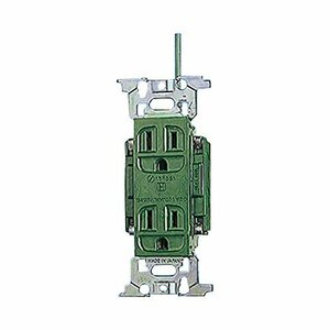 Panasonic (Panasonic) full color medical double double outlet green