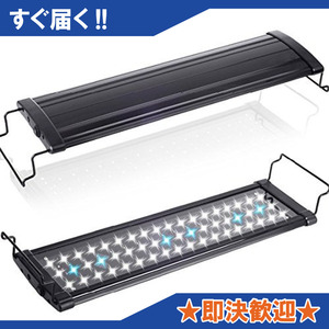 黒 超白光600(9w) [MEOW MARKET] アクアリウムライト フラット LEDランプ LED600 9w 60cm-