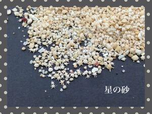 星の砂 星砂 【大容量版】30g レジン 封入 ハンドメイド素材 材料 アクセサリーパーツ ガラスドーム お買い得