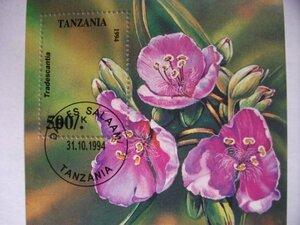 特価!(画像5枚) タンザニア切手『正方形シート』5シートセット