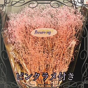かすみ草 プリザーブドフラワー ハーバリウム花材