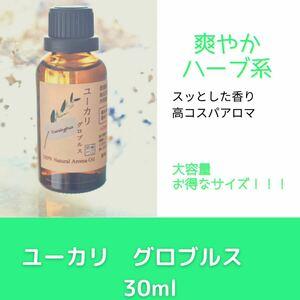ユーカリ グロブルス 30ml アロマ用精油 エッセンシャルオイル