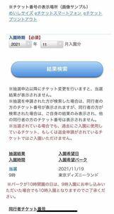 東京ディズニーランド11月19日(金)当選1枚チケット1day passport