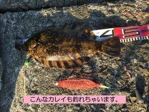 L 2個セット 手作り 投げ釣り 仕掛け 遊動式 オキアミ コマセ ネット ホッケ カレイ アブラコ アイナメ