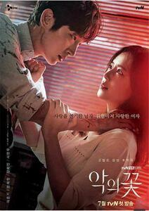 韓国ドラマ 悪の花 Blu-ray版 全話 日本語字幕