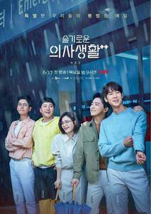韓国ドラマ 賢い医師生活2 Blu-ray版 全話 日本語字幕