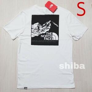 THE NORTH FACE ノースフェイス tシャツ 半袖 ホワイト 白 マウンテングラフィック Graphic 海外サイズ