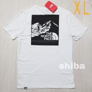 THE NORTH FACE ノースフェイス tシャツ 半袖 ホワイト 白 マウンテングラフィック Graphic 海外XLサイズ