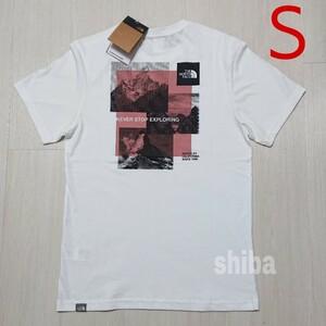THE NORTH FACE ノースフェイス tシャツ 半袖 ホワイト 白 ストライプミックス Stripe Mix 海外Sサイズ