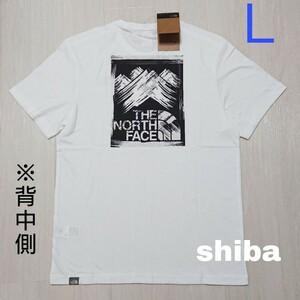 THE NORTH FACE ノースフェイス tシャツ 半袖 白 Stroke Mountain ストロークマウンテン 海外L