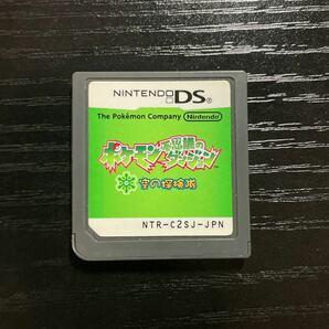 DSソフト ポケモン不思議のダンジョン 空の探検隊