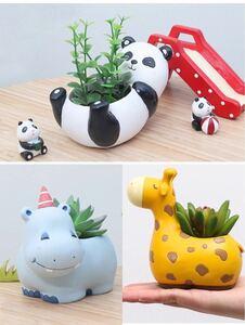 割引商品 植木鉢 多肉植物 観葉植物 寄せ植え キリンさん+パンダさん+カバさん