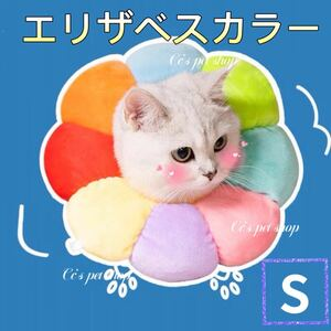 ひまわり型 猫犬兼用エリザベスカラー 去勢術後保護 舐め防止 避妊 虹色 S