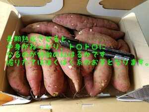 1円スタート。さつまいも令和3年紅はるかSサイズ茨城県箱詰13㌔以上詰土付安納芋以上の甘さ べにはるか農家直送便掘りたて熟成させて完熟芋