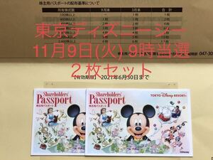11/9 東京ディズニーシー 11月9日(火) ペアチッケト 2枚セット 9時入園 1デーパスポート