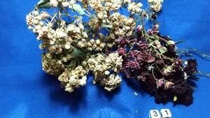 花31 バラ・他 自然乾燥 ドライフラワー プリザーブドフラワー花材  ハーバリウム花材 ハンドメイド花材