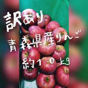 青森県産 りんご 家庭用 弘前 青森 津軽 訳あり ツル割 林檎 ふじ 美味しいよ 万能りんご 加工用 生食用 スムージー ツル割なの